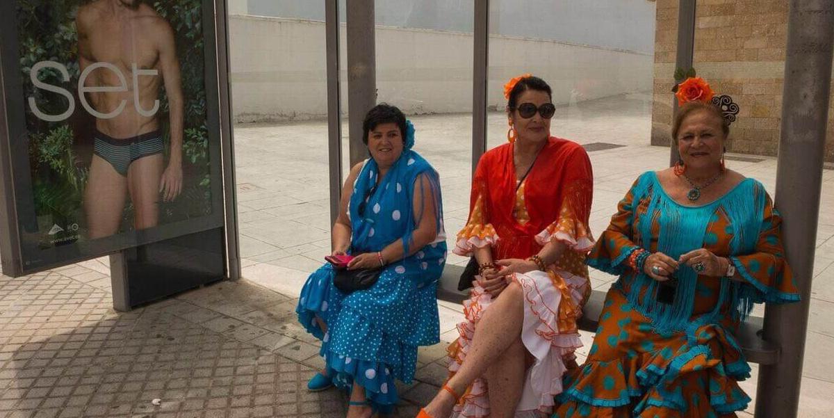 masso flamencas completa