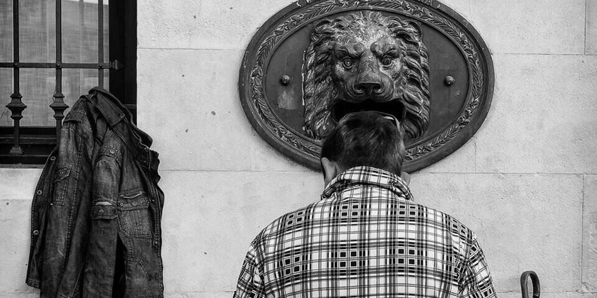 masso cabeza leon
